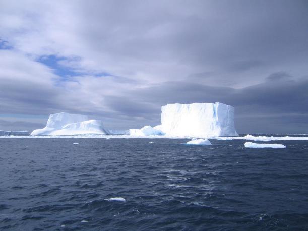 antartika76lb